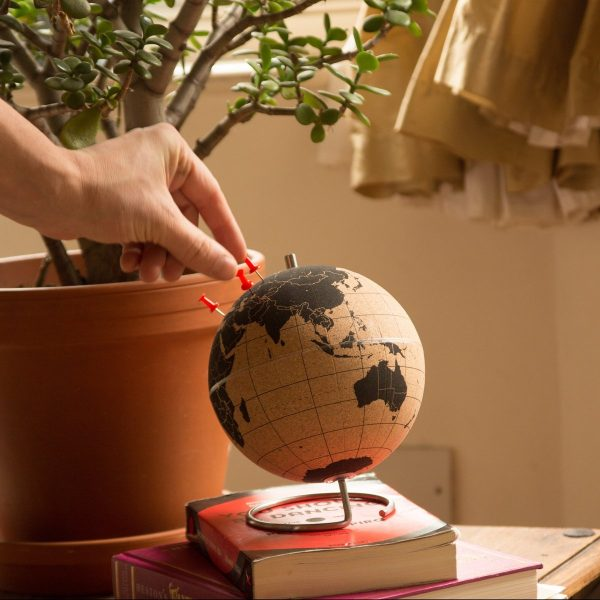 cork-globe-with-pins-travel-themed-wedding-centrepieces-600x600