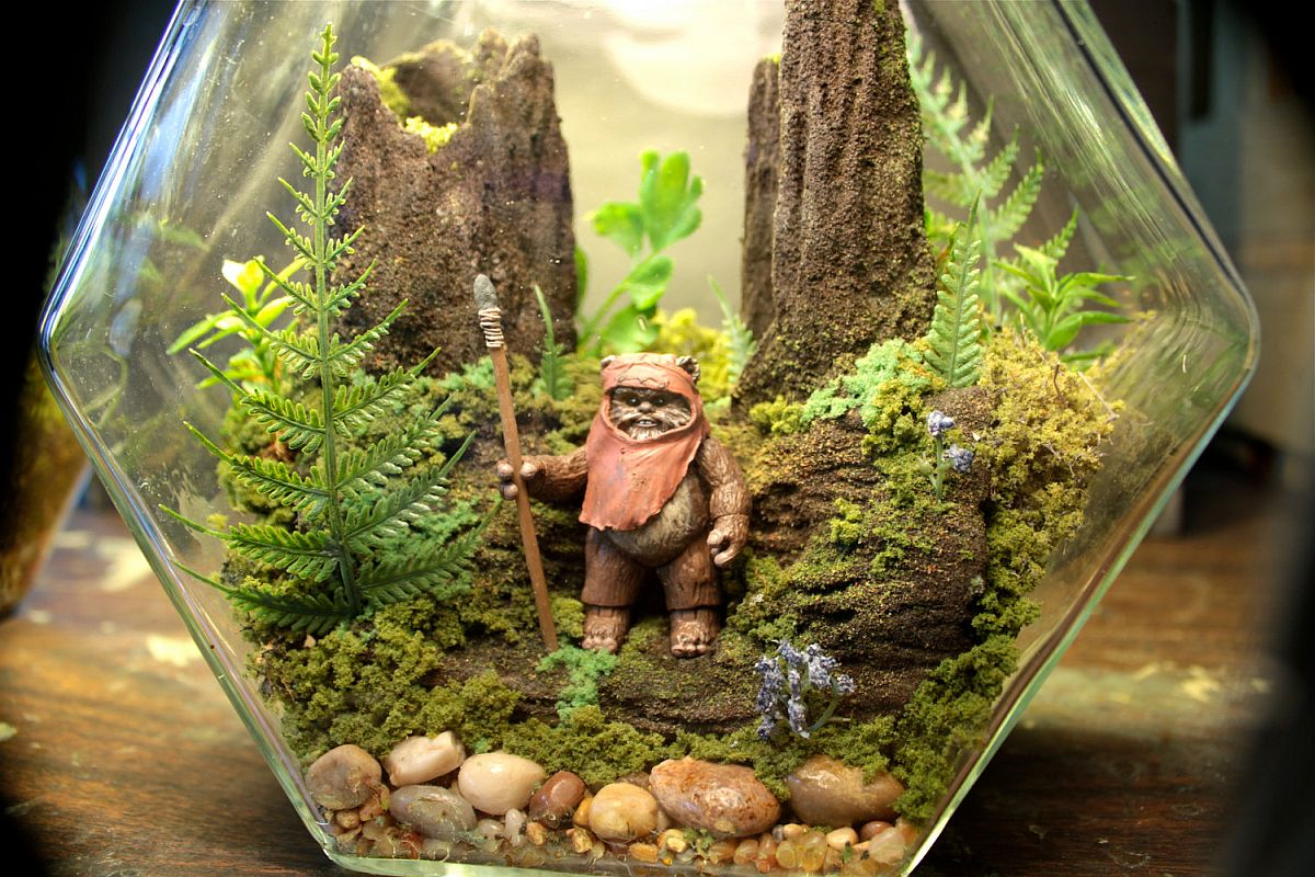 DIY-Star-Wars-Terrarium