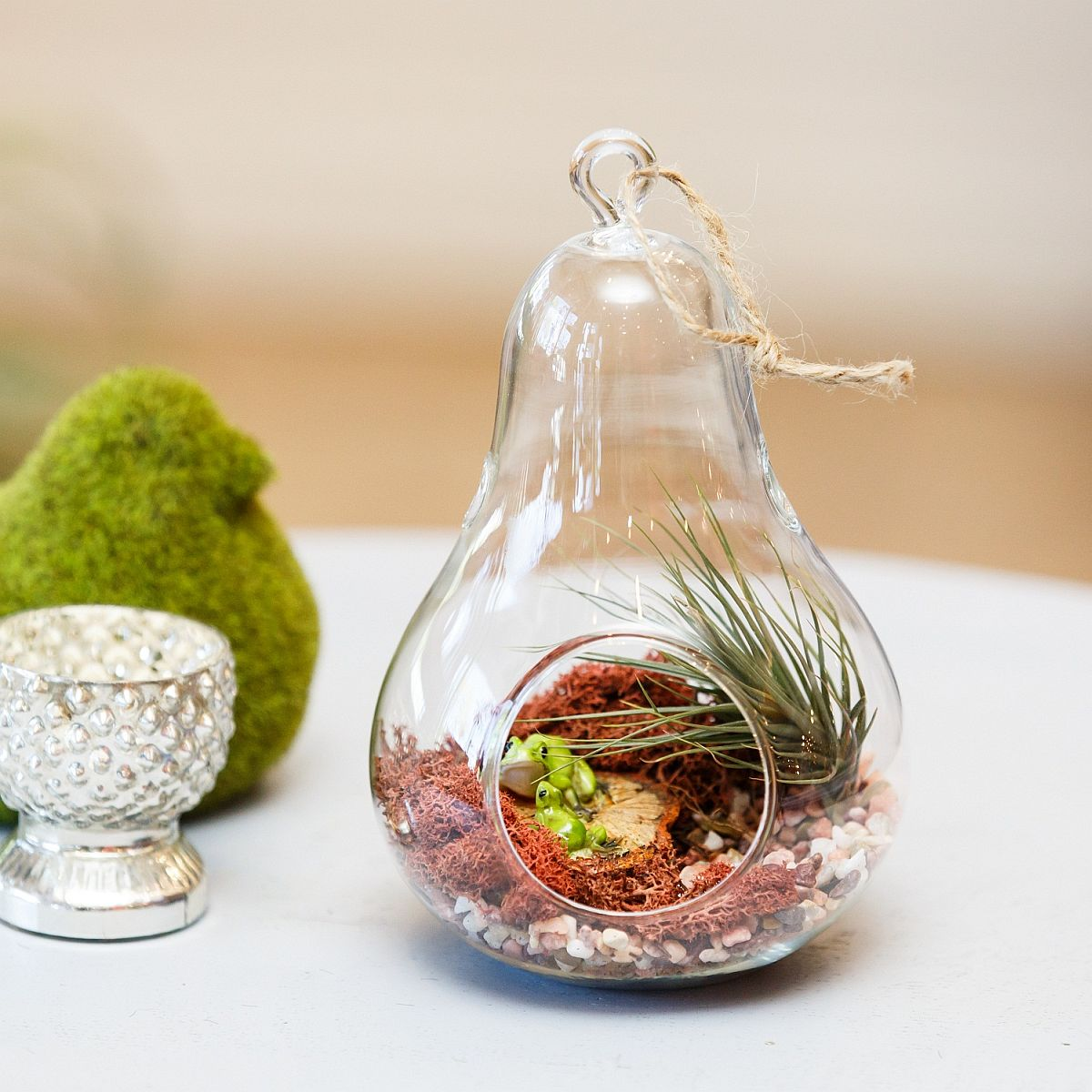 Simple-and-elegant-glass-terrarium