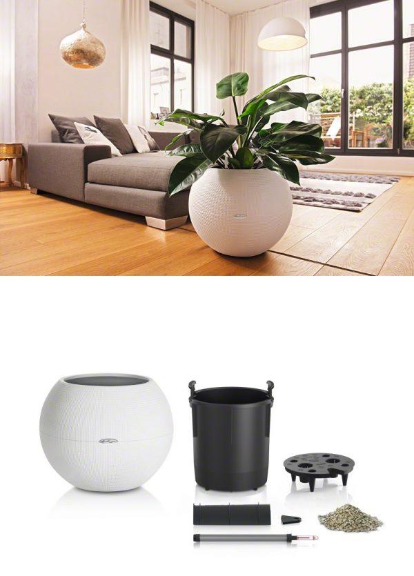 unique-self-watering-planters-600x835