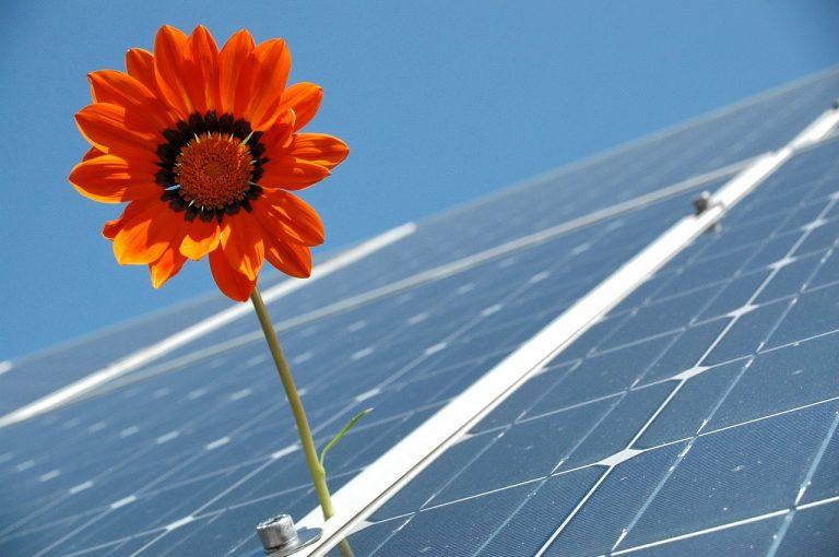 Fotovoltaika pro rodinný dům: Co zvážit před pořízením solárních panelů